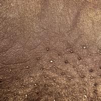 Ostrich Skins - Gold thumbnail
