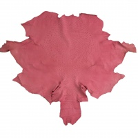 Ostrich Skins - Pink thumbnail