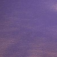 Sheep / Nappa Purple thumbnail